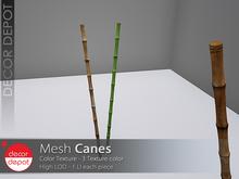 [DD] - FULL PERM  Canes