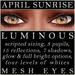 Mayfly   luminous   mesh eyes %28april sunrise%29