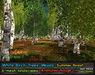 21strom White Birch Forest Summer - 6 animated mesh landscapes