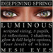 Mayfly   luminous   mesh eyes %28deepening spring%29