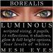 Mayfly   luminous   mesh eyes %28borealis%29