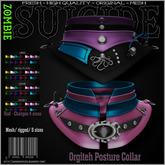 :Z.S: Orgiteh Posture Collar