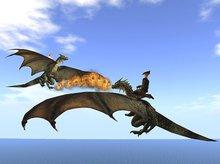 Battle Dragons Rezer