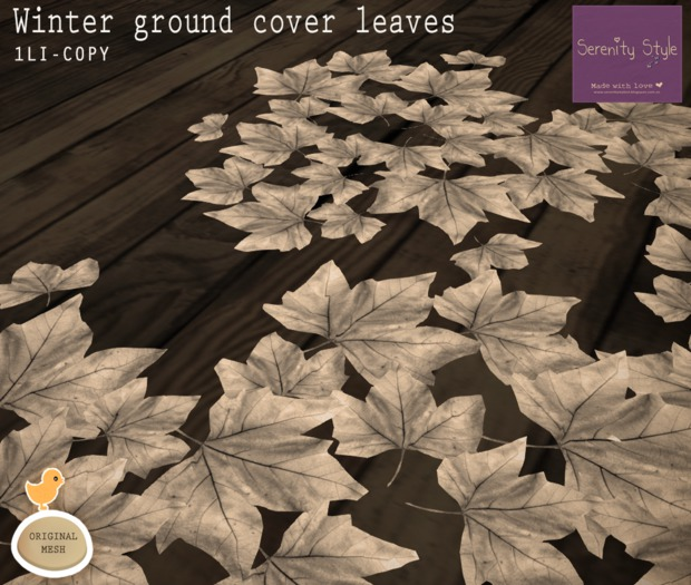 Serenity Style- Winter Ground Cover