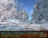 21strom White Birch Glen Early Winter - 8 animated mesh landscapes