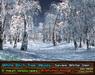 21strom White Birch Glen Severe Winter - 8 animated mesh landscapes