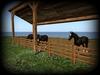 Charly ranch 006