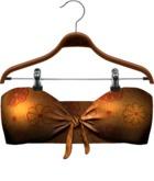 !APHORISM! 'Monaco' Bikini Top Four