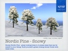 Snowy Nordic Pine Trees - 4 sizes - copy and modify to build your own forest - xmir Mesh