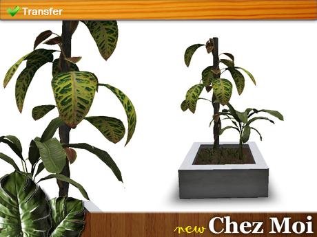 Potted Plant Sunshine ♥ CHEZ MOI