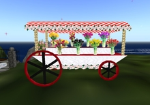 Mw Flower display carts 1 with flowers 1 without bargain for Easter day new item