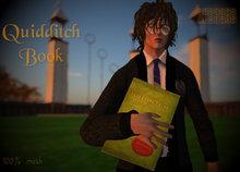 Quidditch book