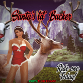 Santa's Little Bucker -=*WINTER SALE!!*=- Super Fun Reindeer decoration game