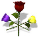 SALE - Builders Rose Kit by [AG]Arctic Greenhouse Flowers SALE