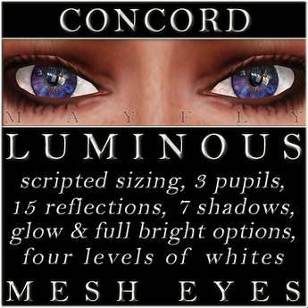 Mayfly - Luminous - Mesh Eyes (Concord)