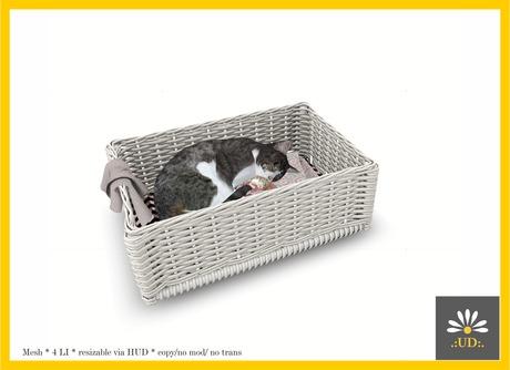 :Urban Daisies: MESH - Sleeping Kitty