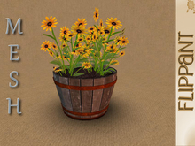 Sunflowers in Barrel [MESH]