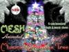 Akaesha christmas tree classified bright