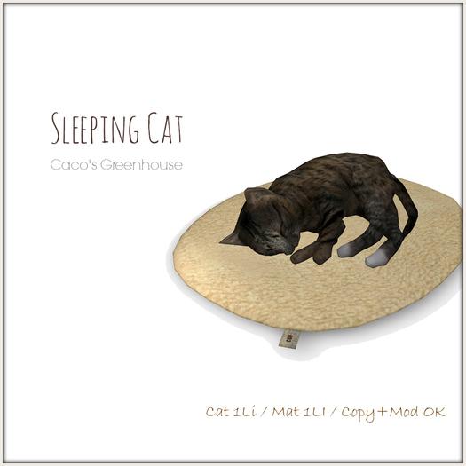 [CGH] Sleeping Cat