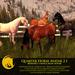 BC Quarter Horse Avatar 2.1