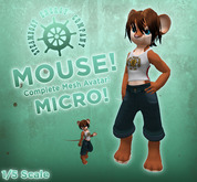 SEC Micro Mouse! (1/5 Scale)