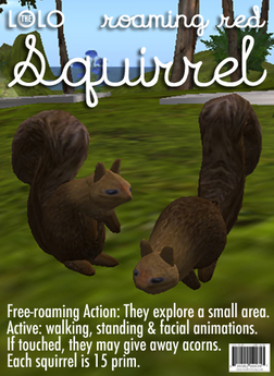 LOLO Roaming Red Squirrel: Copyable & Animated