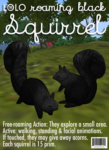 LOLO Roaming Black Squirrel: Copyable & Animated