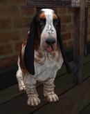 Dog Mesh - Basset Hound Sitting - Copy/Mod