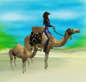 Rideable Rodeo Camel & baby w/sounds & color change blanket & basket