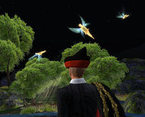 Flying Fairies!