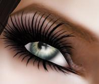 **Infinity Eyelashes**