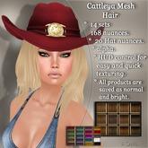 !SOUL - HAIR Mesh - Cattleya - 12 Nuances -  Browns Set 2