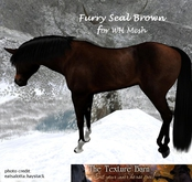 The Texture Barn - Furry Seal Brown  for WH Mesh Horse