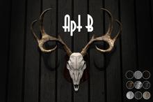 Apt B // Deer Mount [Boxed]