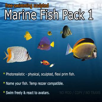 Marine Fish - Pack 1 (Free-Swimming)