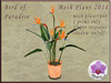 Mesh plant 2014 bird of paradise