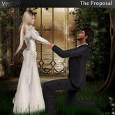 Vestige The Proposal