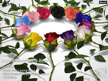 CATWA Laying Roses