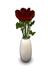 Vase red for mp