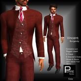 PierreStyles VINCENT BURGANDY Suit COMPLETE