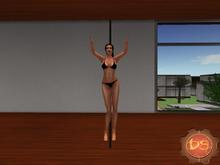 Belly Dance Pole