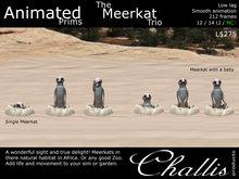 (Challis) Animated Meerkat Trio (BOXED) (MC)