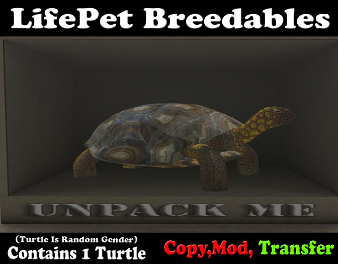 (BOXED) LifePet Breedable Starter Turtle Egg (Clean_Clean)