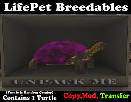 (BOXED) LifePet Breedable Starter Turtle Egg (Violet_Violet)