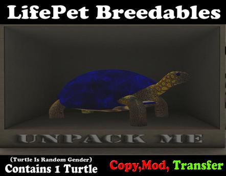 (BOXED) LifePet Breedable Starter Turtle Egg (Blue_Blue)