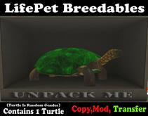 (BOXED) LifePet Breedable Starter Turtle Egg (Green_Green)