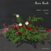 AvaGirl - Rose Bush