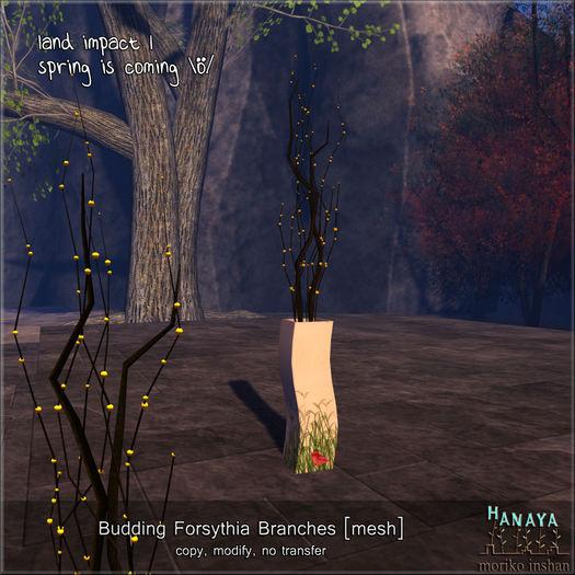 -Hanaya- Budding Forsythia Branches [mesh]