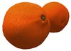 Orange Fruit Navel Naval Variety Sculpty 1 prim Hyper Real V2