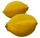 Lemon Fruit Variety Sculpty 1 prim Hyper Real V2